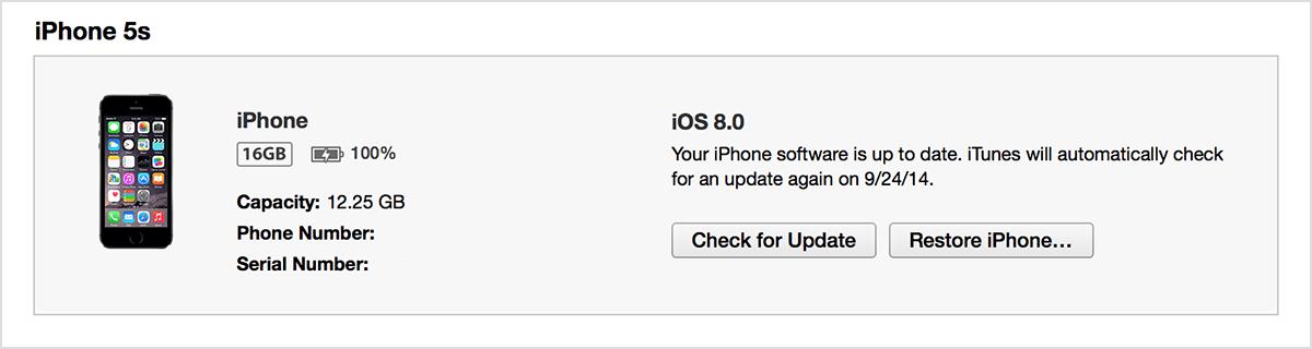 iPhone summary tab