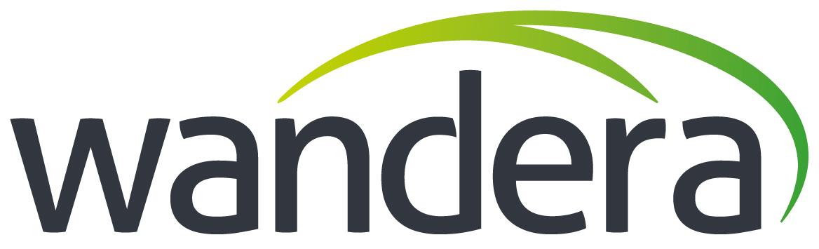Wandera certified partner